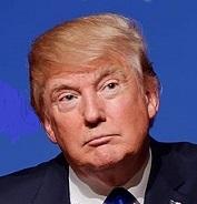 トランプ108 Donald_Trump_August_19,_2015_(cropped)
